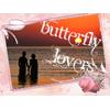 farfalla amanti