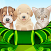 puppy and kitten caring game games