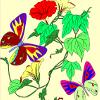 colora��o das flores e borboletas