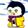 Le bébé Pingouin