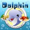Le dauphin serveur