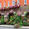 Puzzle de restaurant � fleurs