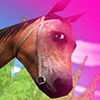 Saut de chevaux