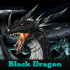 l'univers des dragons